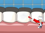 Brushing-denticulus-venatus